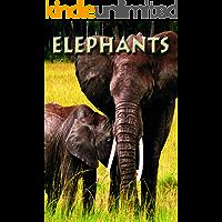 Elephants (Zoo Kids)