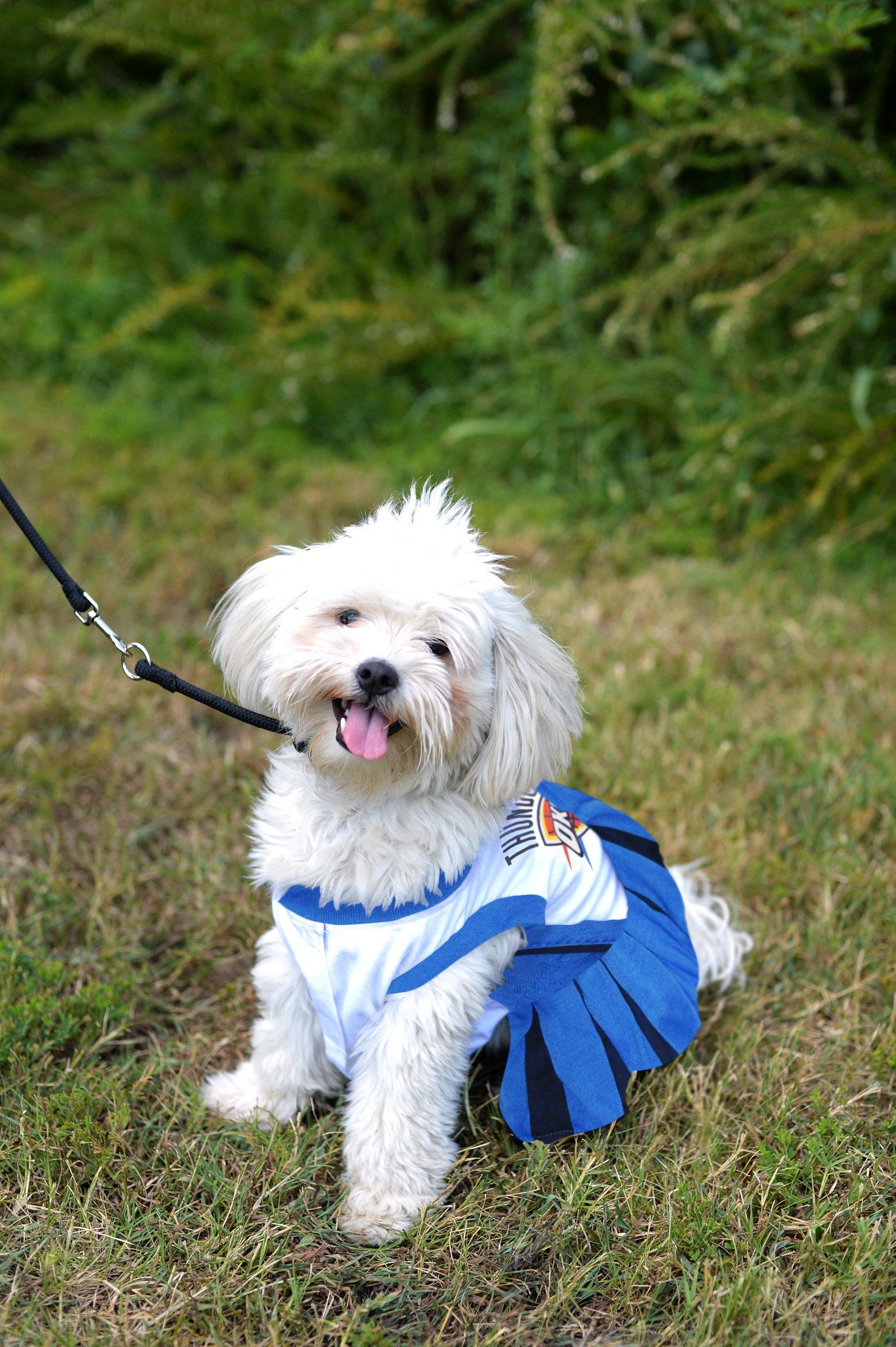 Pets First NBA Oklahoma City Thunder Dog Cheerleader Dress, Medium by Pets First (Image #3)
