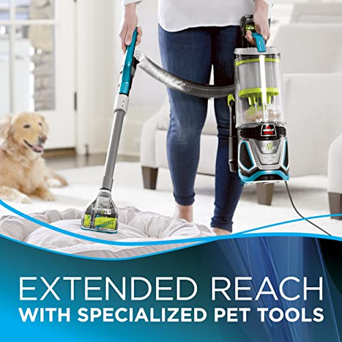 Improve cleaning performances with the specialized pet tools