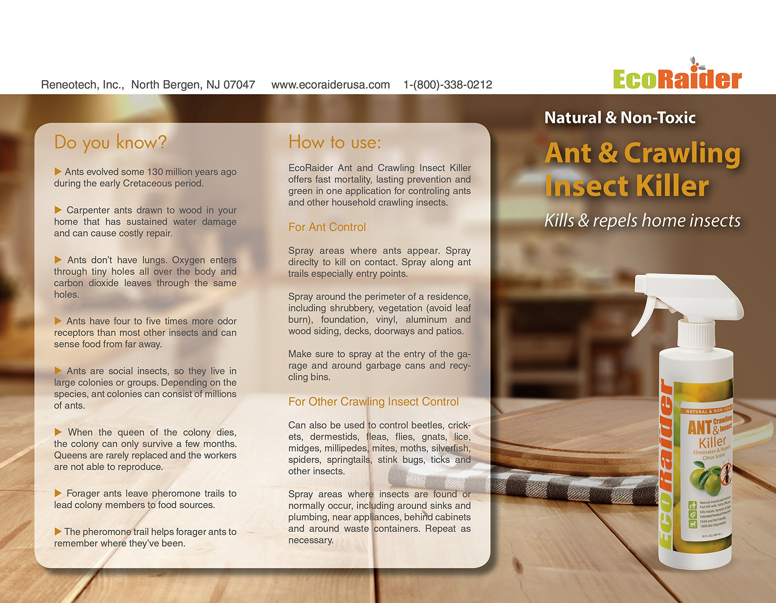 EcoRaider Ant Killer & Crawling Insect Killer (Citrus Scent) 16 OZ, Natural & Non-Toxic by EcoRaider (Image #1)