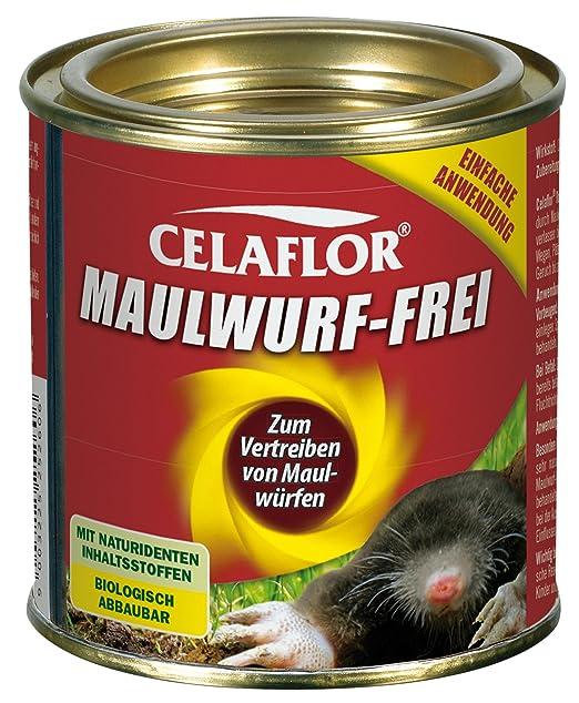 Maulwurf Verjagen celaflor maulwurf 50 st amazon de garten