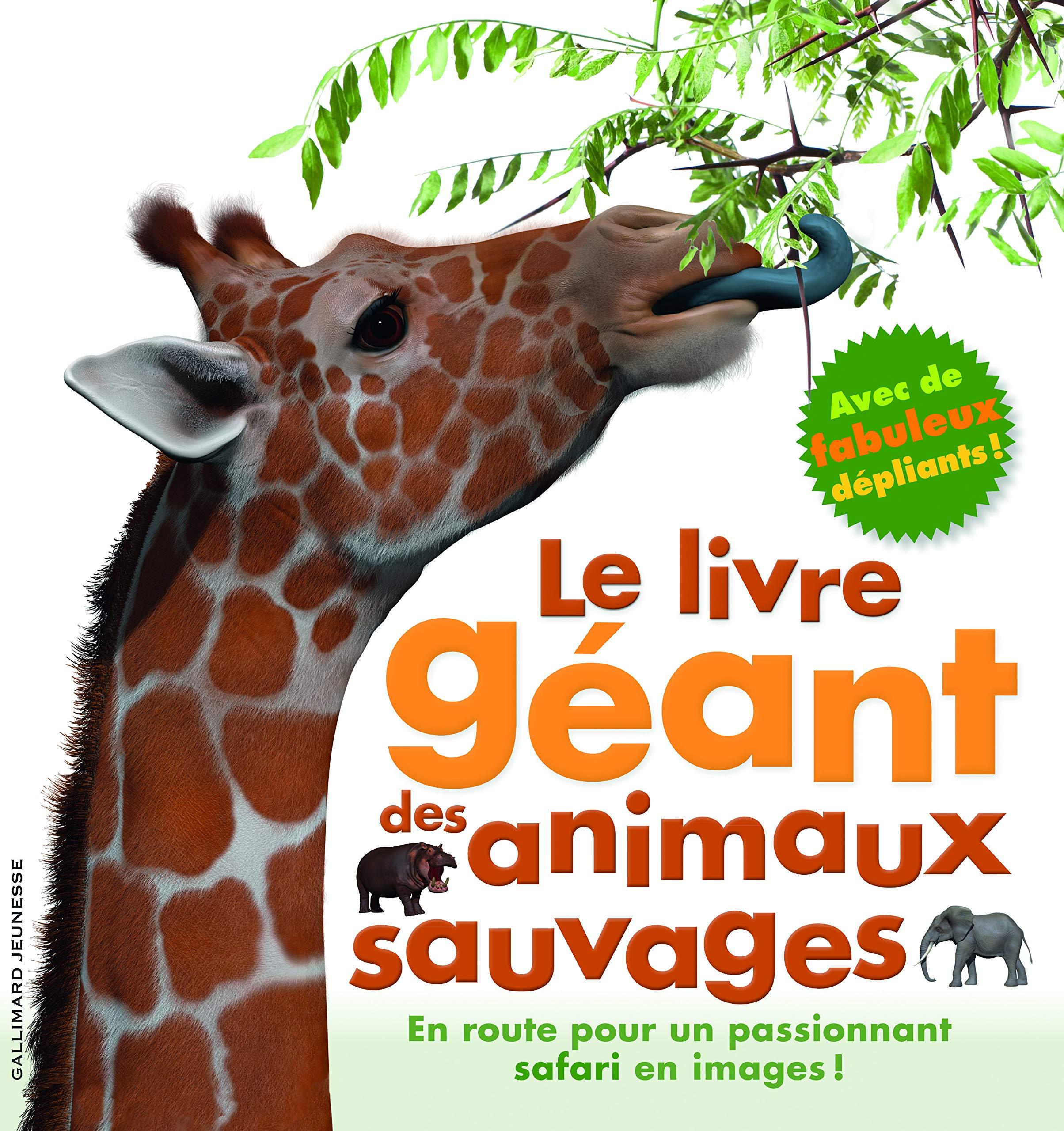 Amazon Fr Le Livre Geant Des Animaux Sauvages Mary