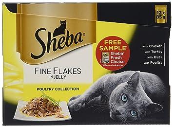 Sheba Premium Cat Food Review