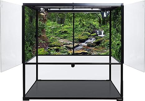 Carolina Custom Cages Terrarium, Bio Deep 36Lx18Wx36H; Fácil de Montar: Amazon.es: Productos para mascotas