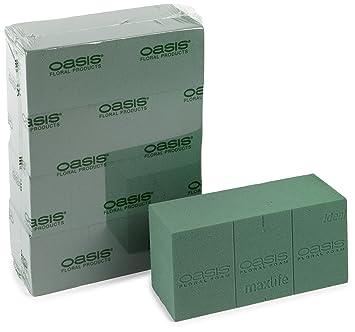 Oasis - Espuma Maxlife Ideal para Flores (La Caja Contiene 4 Bloques): Amazon.es: Jardín