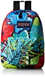 JanSport High Stakes Backpack- Sale Colors