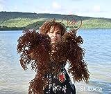Wildcrafted Irish Moss/Sea Moss