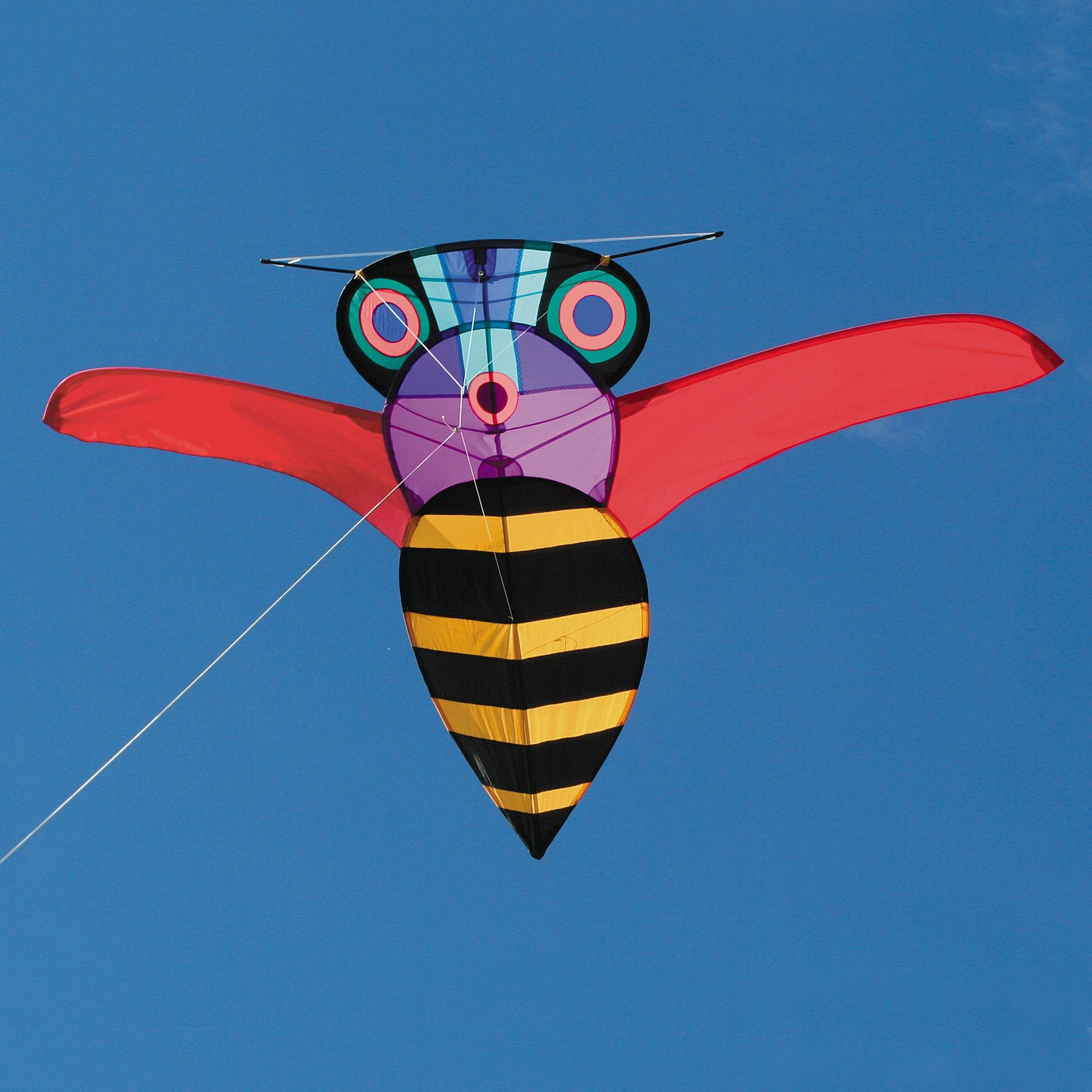 George Peters' Buzz Bee Kite by Into The Wind