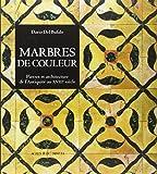 Marbres de couleur : Pierres et architecture de l'Antiquité au XVIIIe siècle