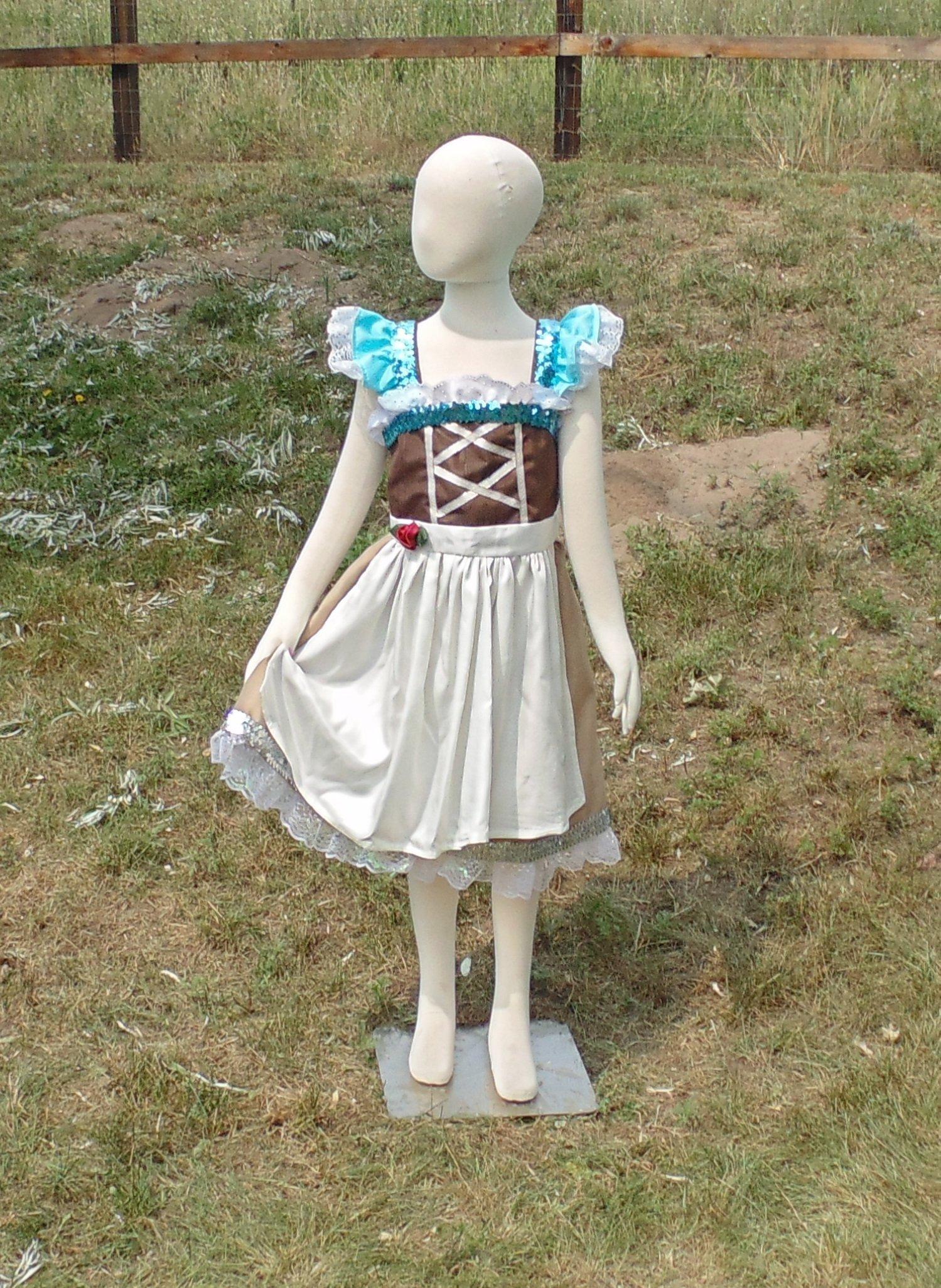 Girls 6-8 Peasant Cinderella dress up apron