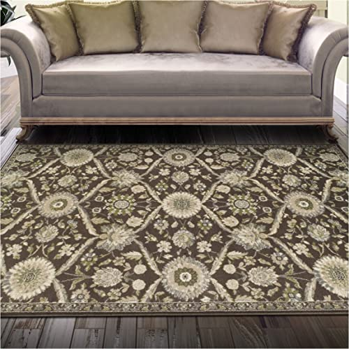 Superior Chandler Collection Area Rug, 8mm Pile Height with Jute Backing, Beautiful Floral Lattice Pattern, Fashionable and Affordable Woven Rugs – 4 x 6 Rug