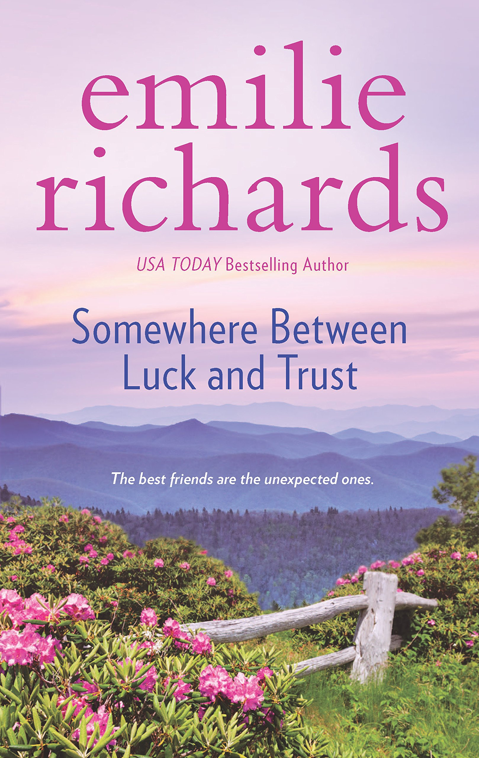 Somewhere Between Luck And Trust (goddesses Anonymous): Emilie Richards:  9780778318866: Amazon: Books