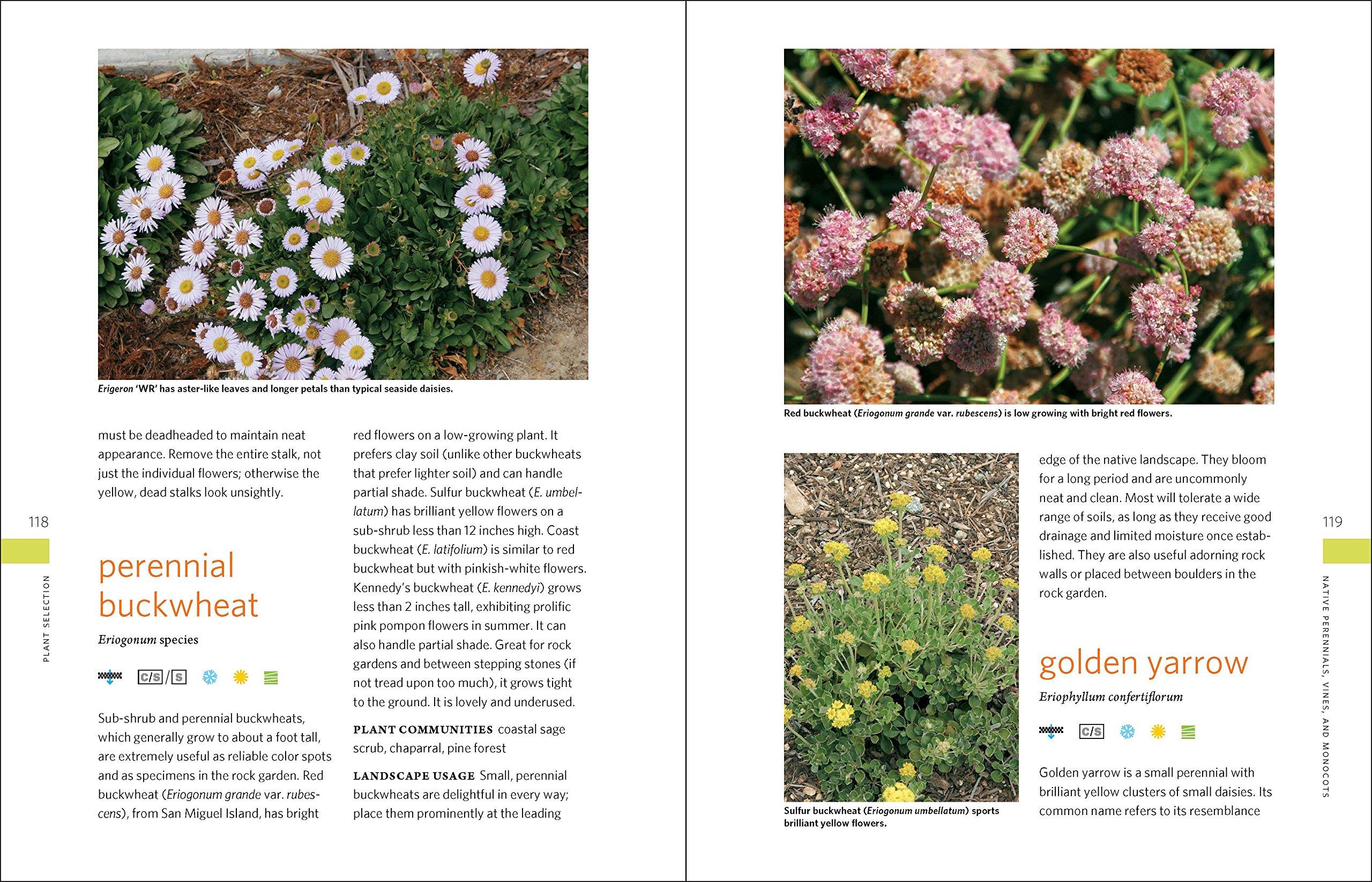 the drought defying california garden 230 native plants for a