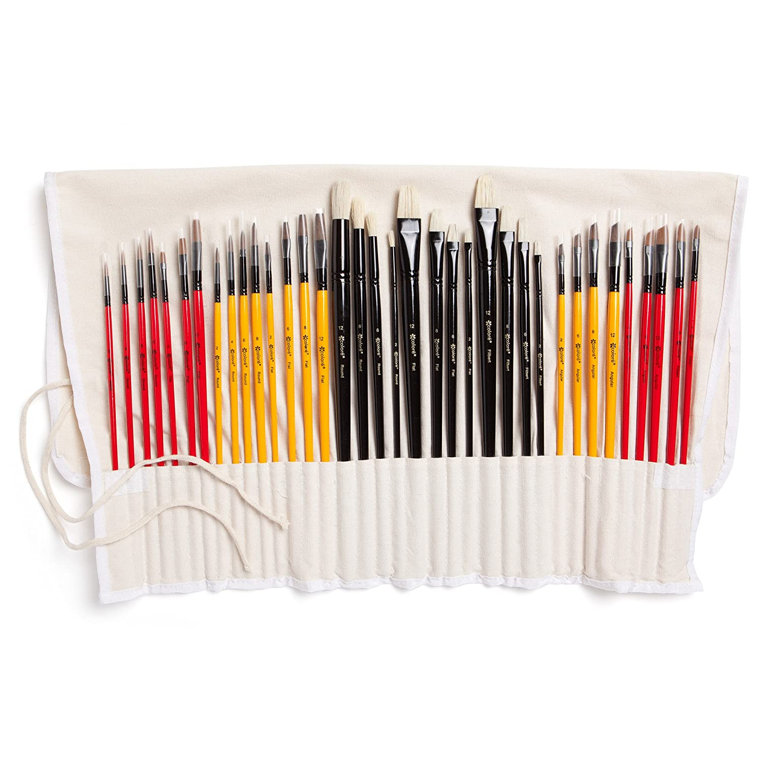 Colore Art Paint Brushes With Nylon Wrapping Case – Complete PACK of 36 Professional Grade Paint Brush Set – 12 Acrylic, 12 Oil & 12 Watercolor Paintbrushes – Lightweight and Durable Painting Supplies 4336961786