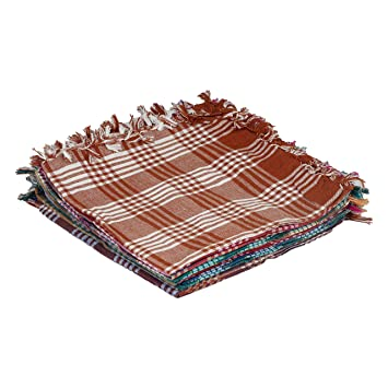 APCO (an Andhra Pradesh Govt. Enterprise) Handloom Cotton Napkins (Pack of 12)_Multicolour