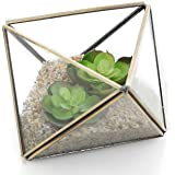 MyGift Diamond Shape Glass Prism Terrarium with Brass Rim/Air Plant Display Case/Tea Light Candle Holder