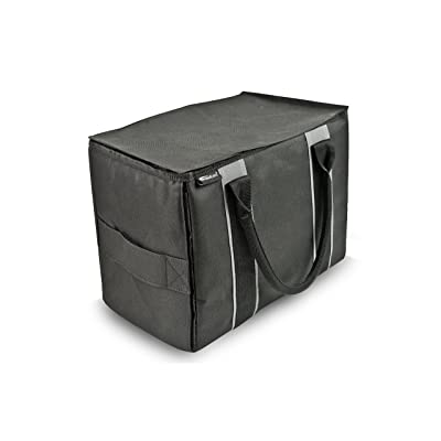 AutoExec AUE14100 Black Mini File Tote Organizer: Automotive