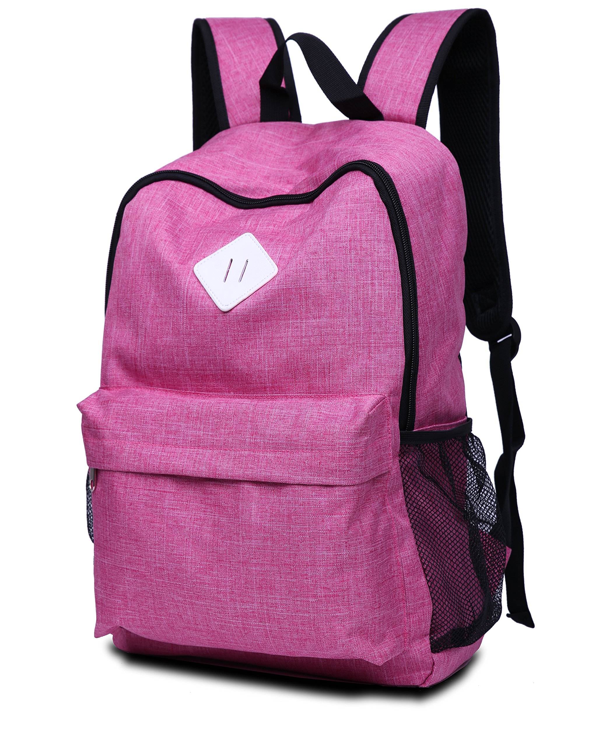College Backpack For Boys & Girls, Water Resistance Travel Backpack With 17 Inch Laptop Case,High School Backpack For Boys & Girls With Hidden Pocket Design Bookbags (PINK)