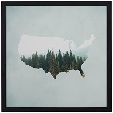 American Forest Map Wall Art Print in Black Wood Frame, 12  x 12