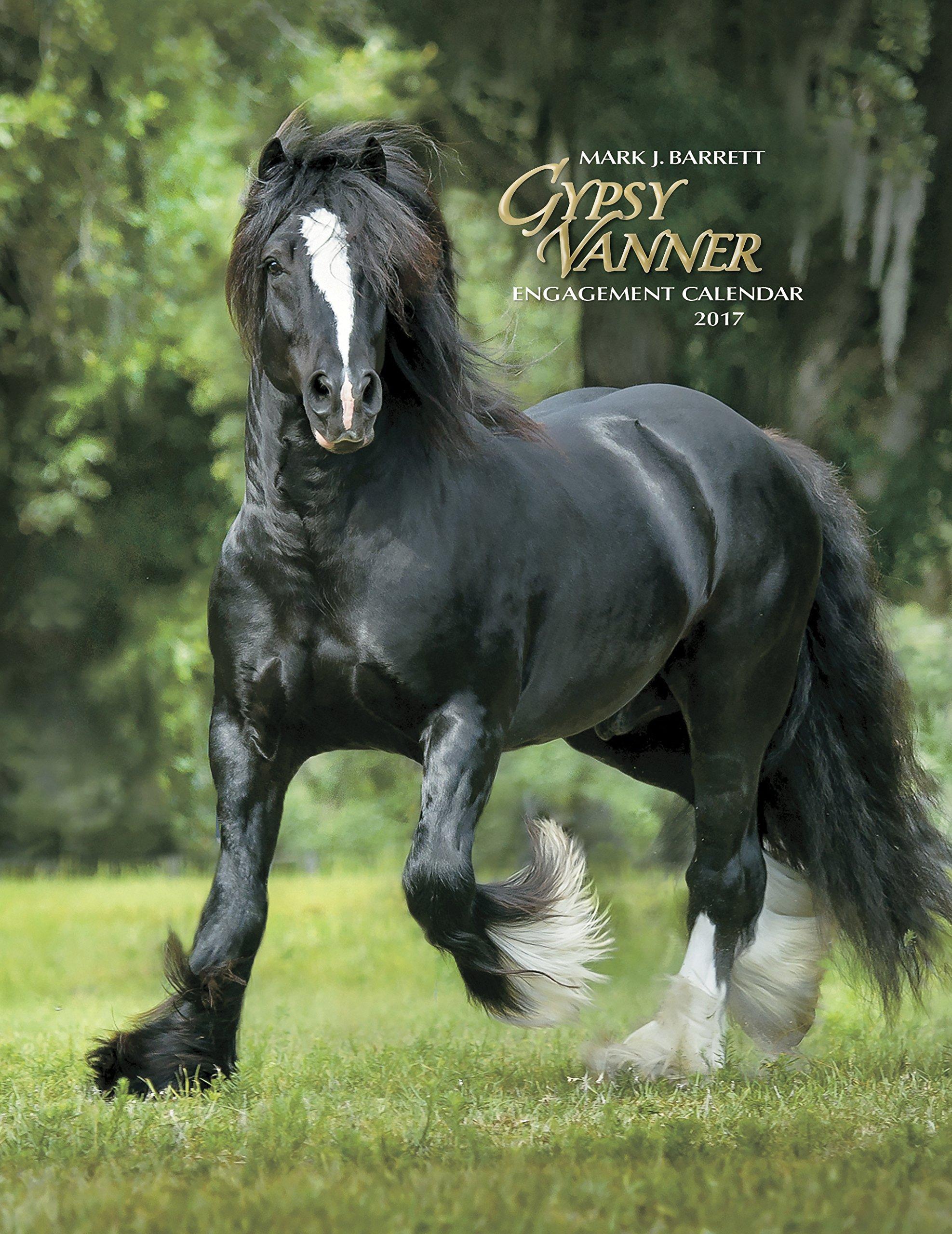 Gypsy Vanner Horse 2017 Engagement Calendar PDF