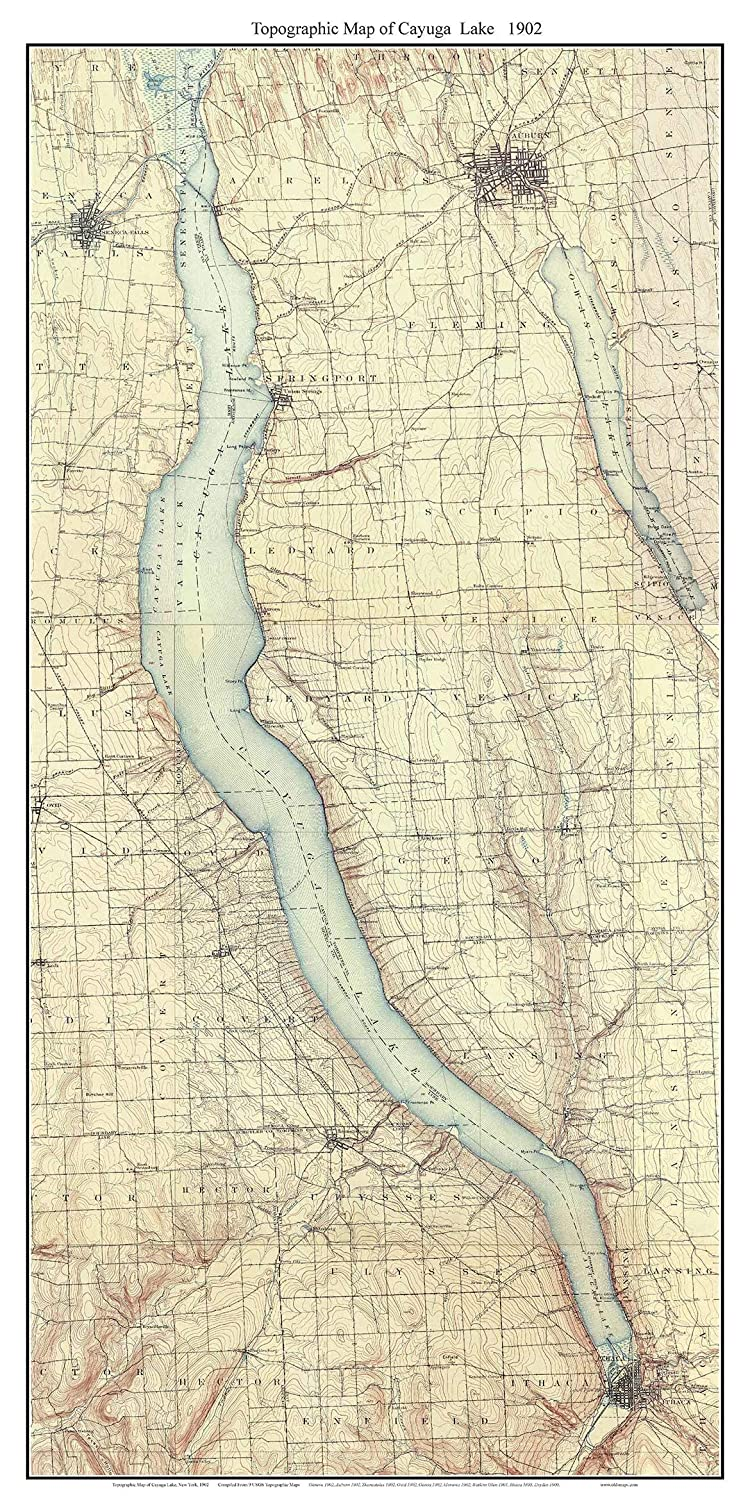 Cayuga Lake - 1902 USGS Old Topographical Map Custom Composite Print New  York Finger Lakes