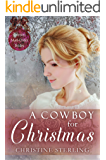A Cowboy for Christmas (Spinster Mail Order Brides Book 11)
