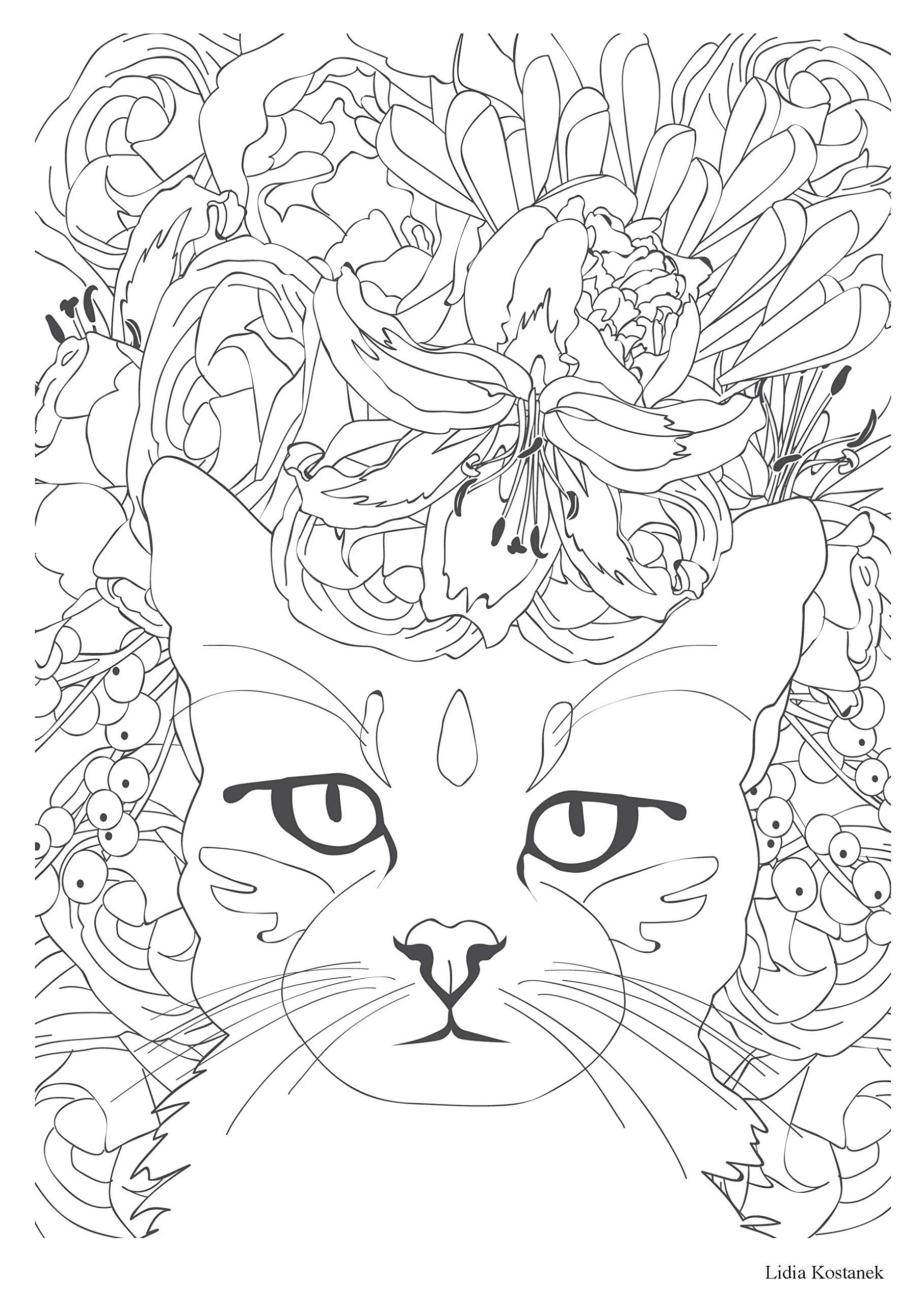 art therapie chat therapie 100 coloriages anti stress french edition collectif hachette 9782010090981 amazoncom books