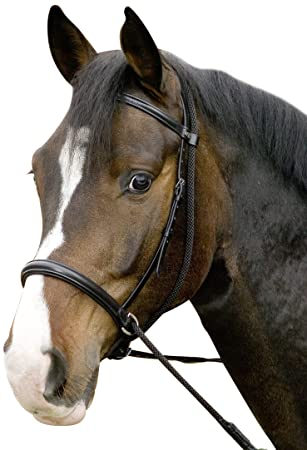 USG Bitless Bridle Connection with Noseband/ Web Reins, Cob, Black Leather/  Black Lined