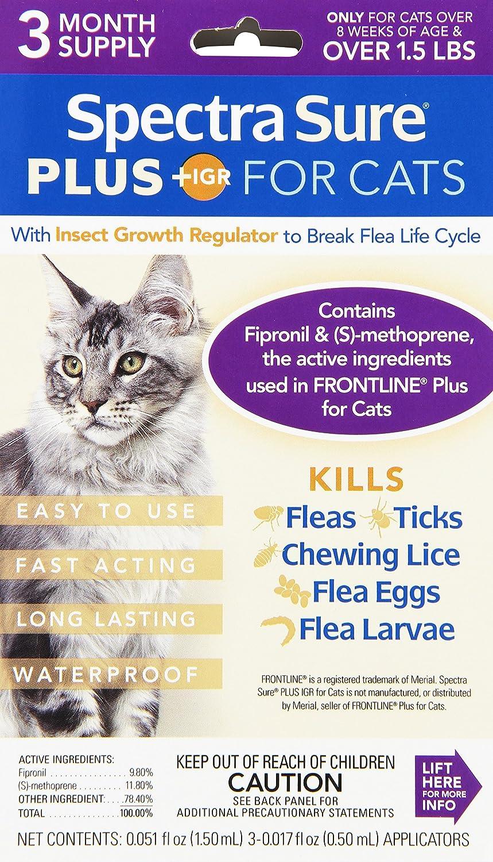 Spectra Sure Plus IGR Gotas para Todos los Pesos de Gatos (línea Frontal genérica): Amazon.es: Productos para mascotas