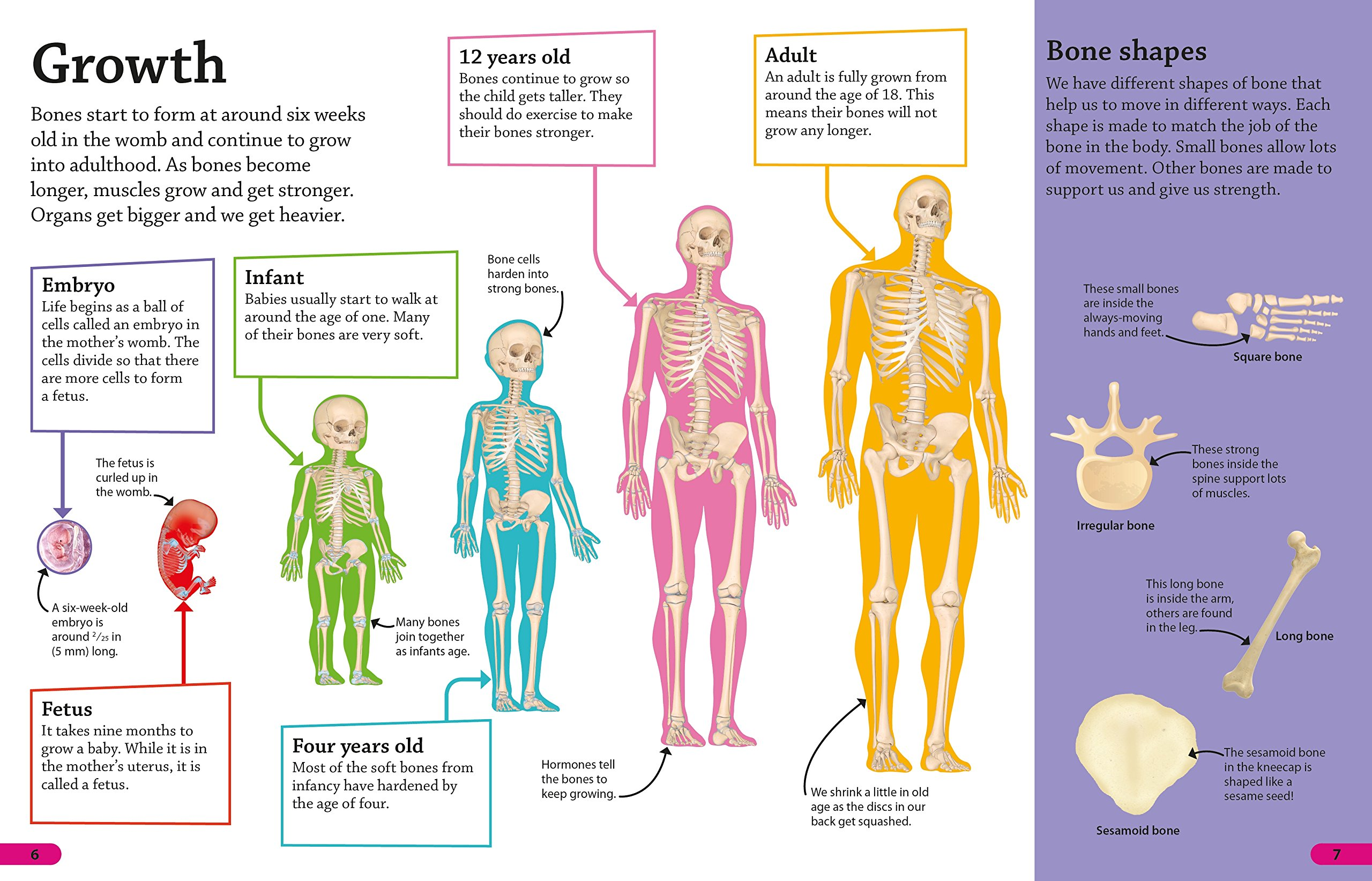 What we did not know about the possibilities of the human body