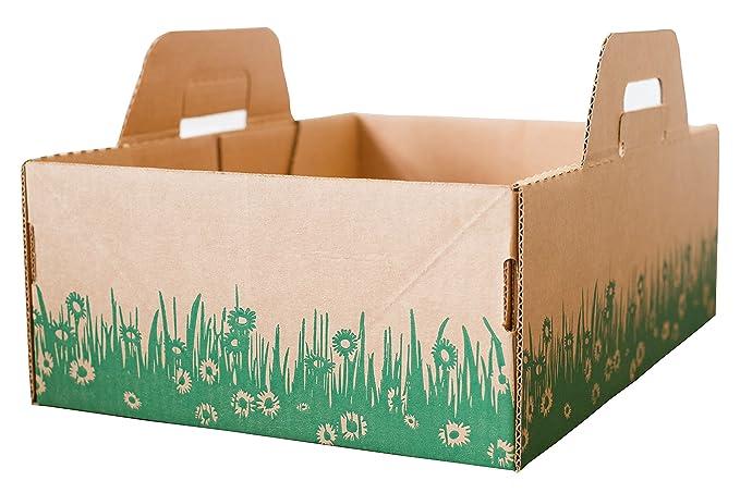 Ten Second Litter Boxes