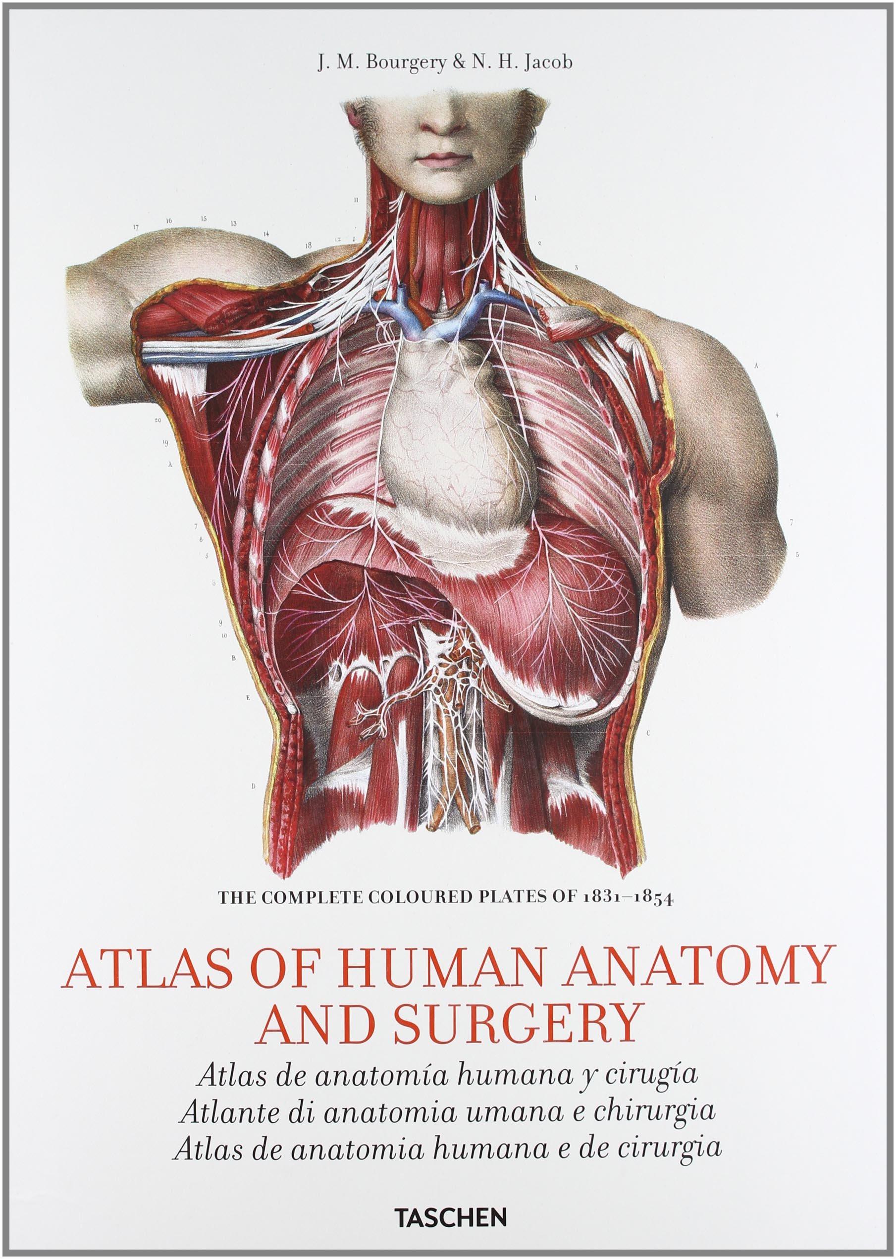 Bourgery Atlas Of Human Anatomy And Surgery Amazon Collectif