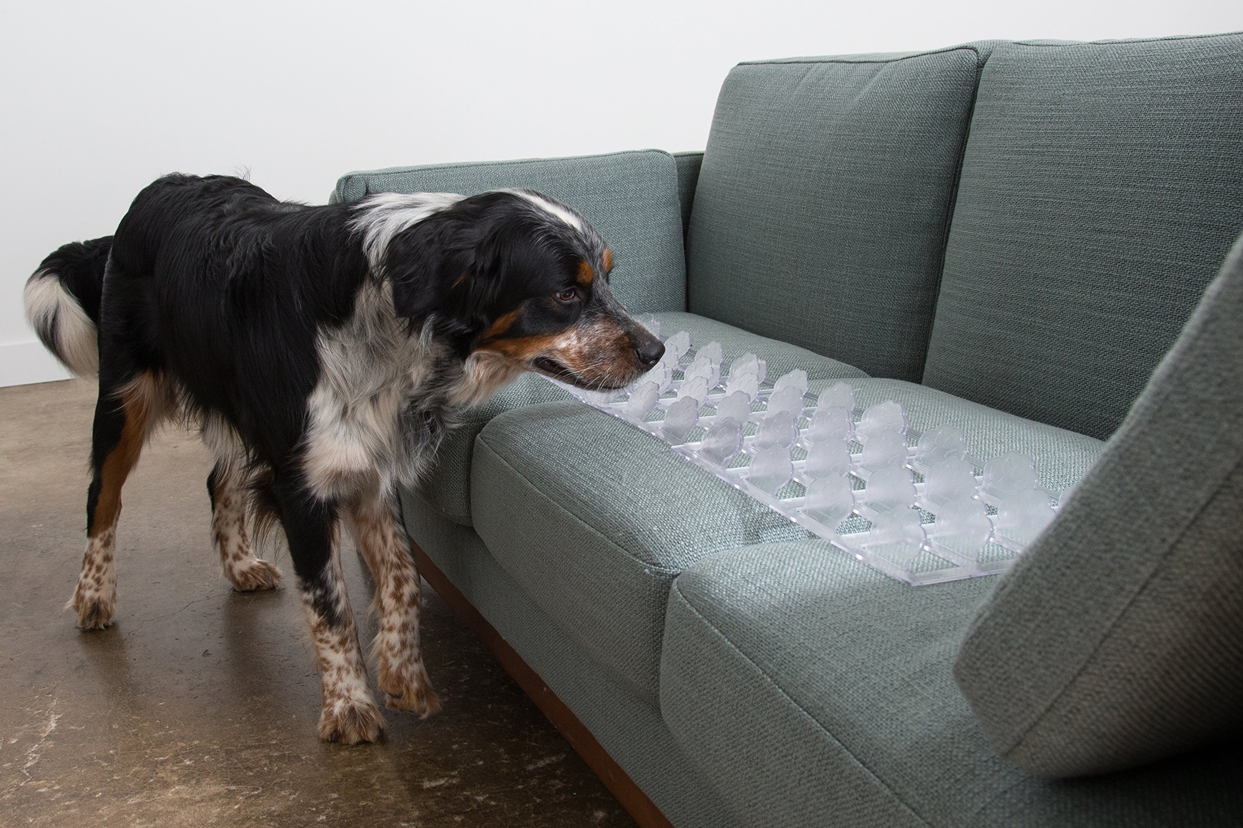 Couch Guard & Furniture Protector - Keep Dogs & Pets Safely off Furniture (Quantity 4 /CLEAR) Made in USA!