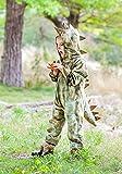 Princess Paradise Child T-Rex Costume, X-Large