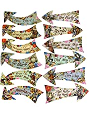 ASVP Shop Alice in Wonderland Party Vintage Style Arrow Signs / Mad Hatters Tea Party Props Pack of 12 Signs