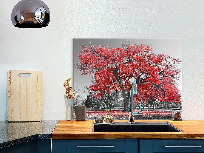 murando Protection de Verre de Cuisine Plaque de Protection en Verre Tremp/é Tableau D/écoratif Design 60x60cm Nature Arbre Rouge Noir Maple c-B-0517-aq-a