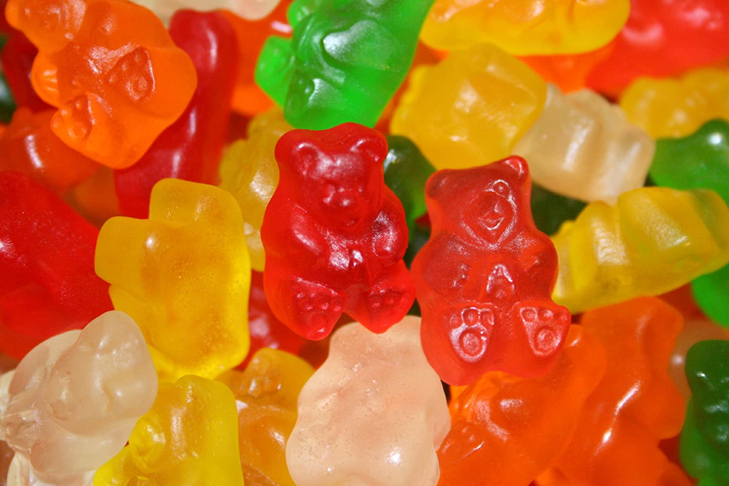 Haribo gummy bears are just one of many products that thomas - Amazon Com Sugar Free Gummy Bears 5lbs By Albanese Confectionery Gummy Candy Grocery Gourmet Food