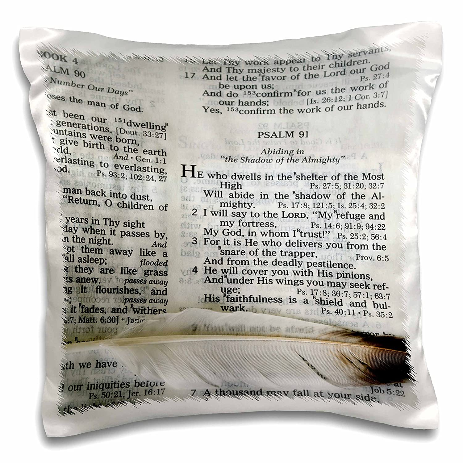 3dRose Photograph of a bible open to Psalm 91 and marked with a large feather. - Pillow Case, 16 by 16-inch (pc_44028_1)