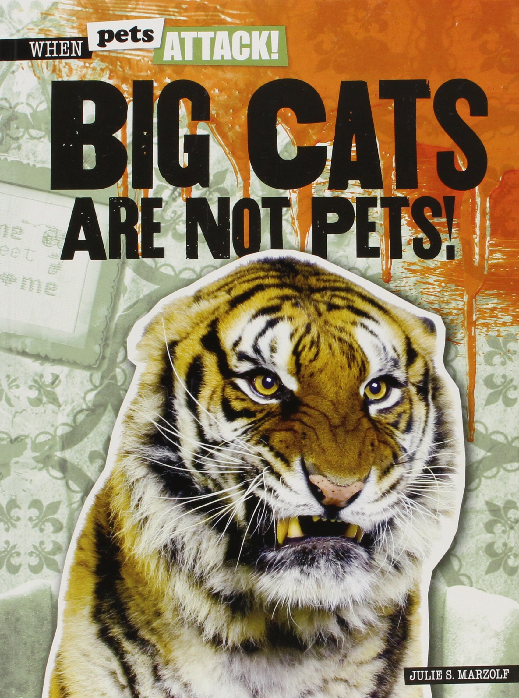 Big Cats Are Not Pets! (When Pets Attack!) PDF