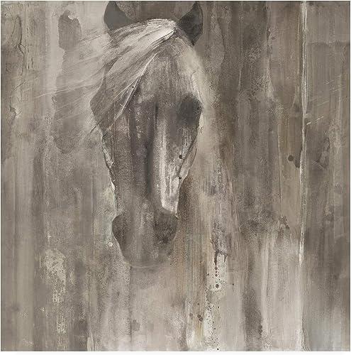 Trademark Fine Art Shadow Light Gray Horse