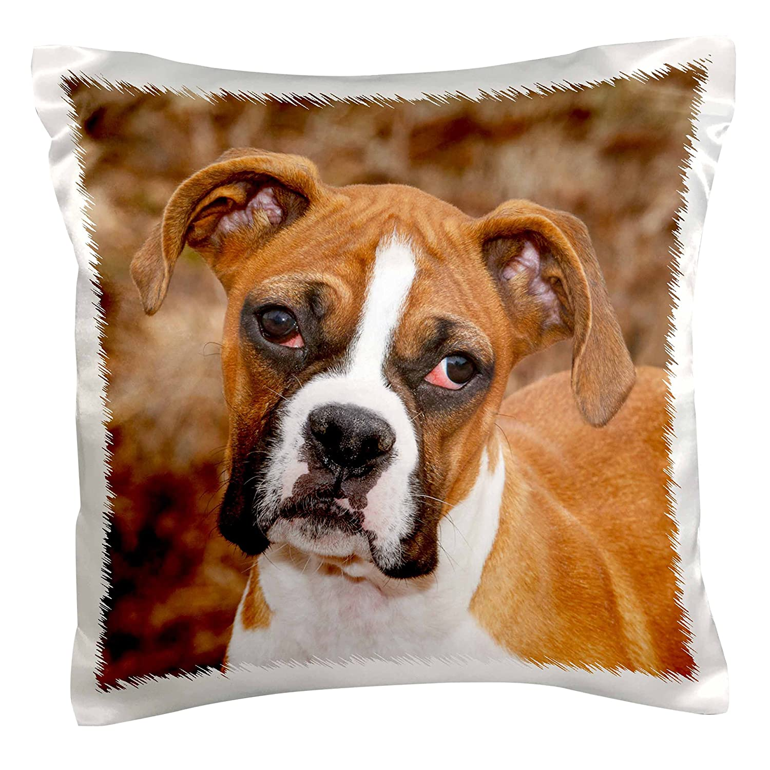 3dRose pc/_140295/_1 Purebred Boxer Dog Na02 Pwo0038 Piperanne Worcester Pillow Case 16 x 16