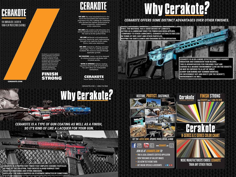 Amazon com : Evike EMG Custom Cerakote Falkor AR-15 Blitz SBR M4