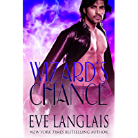 Wizard's Chance (The Realm Book 1) (English Edition)