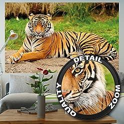 great-art Fototapete Majestätischer Tiger - 210 x 140 cm 5-Teile Wanddekoration Wandbild Wildkatze Tapete Poster-Motiv