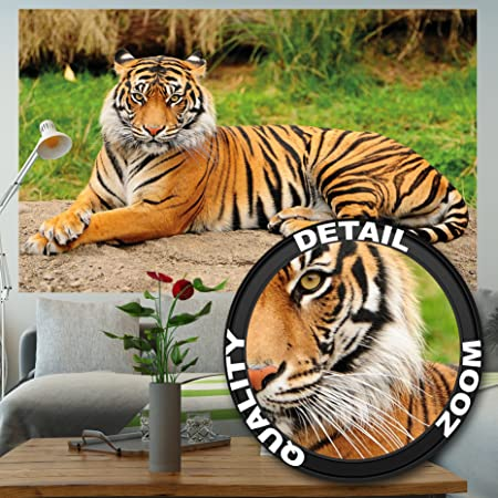 Tiger Photo Wall Paper Majestic Tiger Mural Ideal For Living Room Great Art 82 7 Inch X 55 Inch 210 X 140 Cm