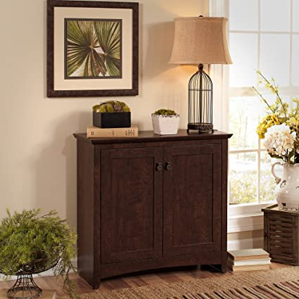 Amazoncom Bush Furniture Buena Vista Small Storage Cabinet With