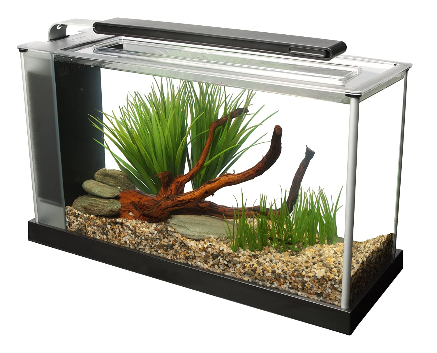 Fish aquarium for sale in lahore - Amazon Com Fluval Spec V Aquarium Kit 5 Gallon Black Aquarium Starter Kits Pet Supplies