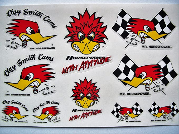 "10/"" x 9/"" Woody Woodpecker bumper sticker wall decor large vinyl decal"
