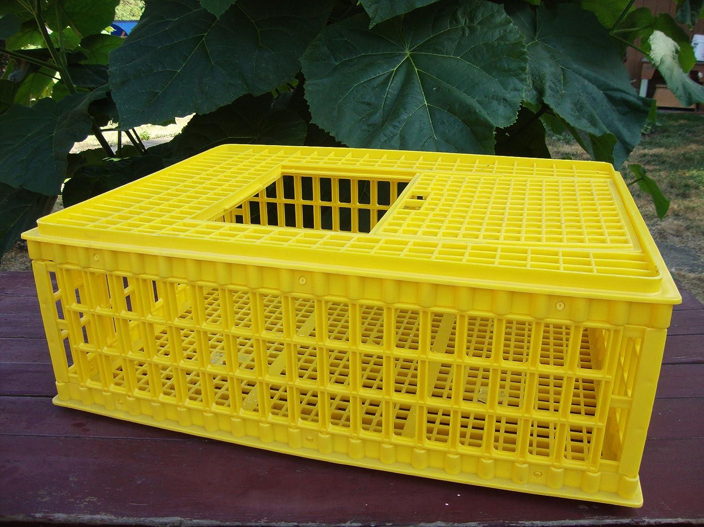 Amazon Com Poultry Transport Crate Top Loading Slide Lid 10 Bird Capacity Pet Supplies
