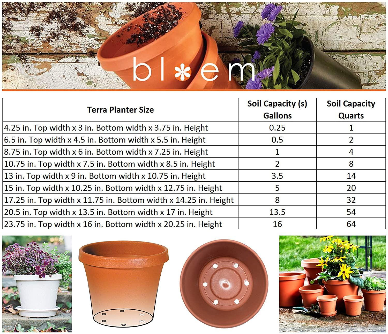 Bloem Terra Pot Planter 6 Terra Cotta Pack of 2
